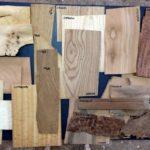 Rozpoznawanie gatunku drewna